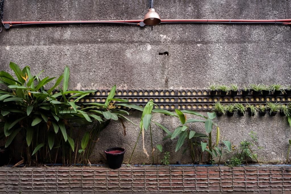 Jardin minimalista materiales